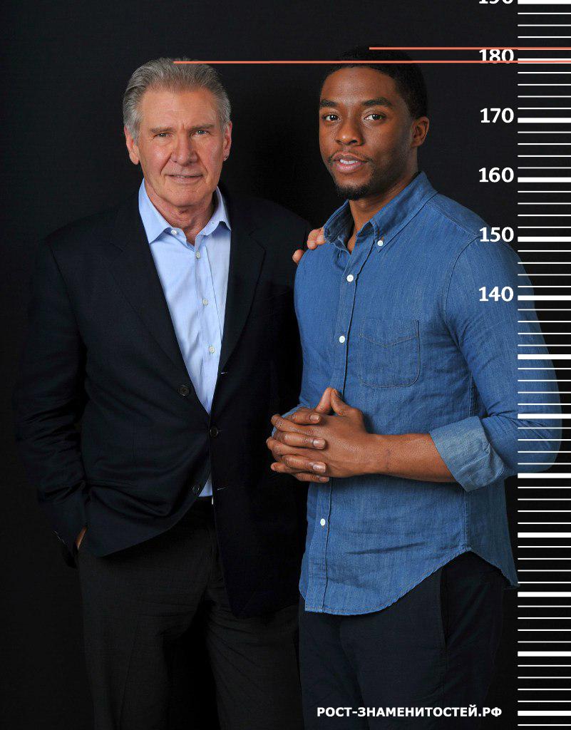 картинка сравнение актеров по росту и весу частями